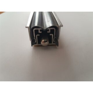 470 x 25 mm (LxB) Absenkbare Bodendichtung 266787